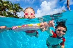 Jonge geitjes in zwembad Stock Afbeeldingen