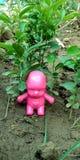 Jonge geitjesstuk speelgoed in de foto van de tuinvoorraad stock afbeeldingen