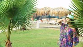 Jonge gelooide vrouw met lang haar die tussen tropische palmen in de zomer dansen stock footage