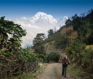 Jonge gelukkige backpackers in berg het genieten van royalty-vrije stock afbeelding