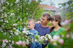 Jonge gelukkige familie in de lentetuin van de kersenbloesem Stock Afbeeldingen