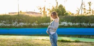 Jonge gelukkige zwangere vrouw die en van het leven in aard ontspannen genieten Mistig dalingseiland Copyspace Stock Fotografie