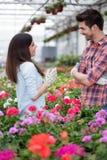 Jonge glimlachende bloemistenman en vrouw die in de serre werken Stock Afbeeldingen