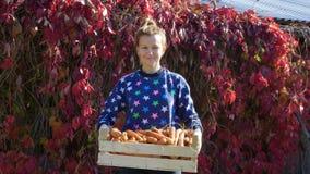 Jonge glimlachende vrouw met een gewas van wortelen in een houten doos in haar handen stock videobeelden