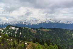 Jonge greens van loofbomen en de donkere naalden van sparren, resten van sneeuw op de hellingen van de bergen van de Kaukasus Royalty-vrije Stock Afbeelding