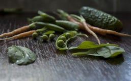 Jonge groenten Royalty-vrije Stock Foto