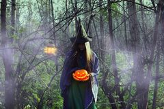 Jonge heks in het donkere bos op Halloween royalty-vrije stock foto
