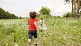 Jonge jongen die aan meisje op groen gebied lopen Kinderen het spelen binnen loopt openlucht de achterstand in stock video