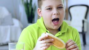 Jonge jongen die een hotdog eten stock footage