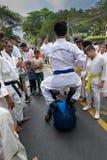 Jonge jongens die Karate uitoefenen stock fotografie