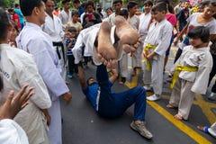 Jonge jongens die Karate uitoefenen stock foto