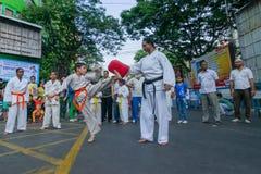 Jonge jongens die Karate uitoefenen royalty-vrije stock afbeelding