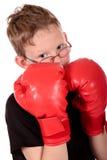 Jonge jongensbokser Stock Foto