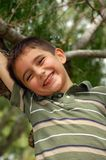 Jonge jongensspelen in een boom Royalty-vrije Stock Afbeeldingen