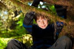 Jonge jongenszitting in boom het glimlachen Stock Afbeelding