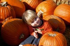 Jonge jongenszitting in een stapel van pompoenen Royalty-vrije Stock Foto