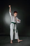 Jonge Karatemens. Royalty-vrije Stock Foto