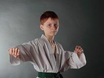 Jonge Karatemens. Royalty-vrije Stock Foto's