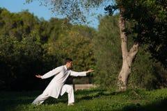 Jonge Kaukasische mens het praktizeren tai-Chi in openlucht in het park Royalty-vrije Stock Foto