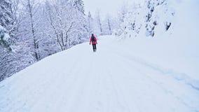 Jonge Kaukasische vrouw die in hout wandelen dat met sneeuw wordt behandeld Terug het kijken stock footage