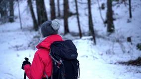 Jonge Kaukasische vrouw die in hout wandelen dat met sneeuw wordt behandeld Terug het kijken stock videobeelden