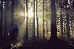 Jonge kerel met een rugzak die zich in een bos in de mist bij zonsopgang bevinden Royalty-vrije Stock Afbeelding