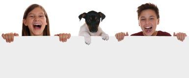 Jonge kinderen en een hond die pret met een leeg teken met exemplaar hebben Royalty-vrije Stock Foto