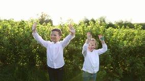 Jonge kinderen op een gebied stock footage