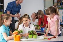 Jonge kinderen in plantkundeklasse royalty-vrije stock afbeelding