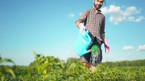 Jonge knappe hipstermens die de tuin met een gieter van het land water geven stock videobeelden
