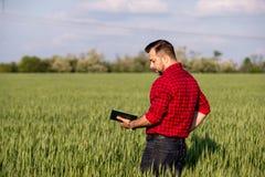 Jonge knappe landbouwer met agenda die zich op tarwegebied bevinden Stock Afbeeldingen