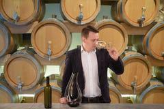 Jonge knappe mensen meer sommelier proevende rode wijn in wijnkelder royalty-vrije stock afbeelding