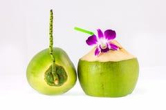 Jonge kokosnoten op witte achtergrond Stock Foto's