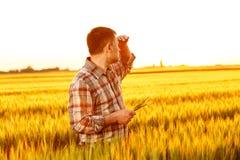 Jonge landbouwer die zich op een tarwegebied bevinden royalty-vrije stock foto