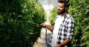 Jonge landbouwer die zijn installaties met chemische producten beschermen royalty-vrije stock afbeeldingen