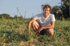 Jonge landbouwer die zijn watermeloengebied controleren bij organisch ecolandbouwbedrijf Royalty-vrije Stock Afbeeldingen