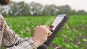 Jonge landbouwer met tablet op het gebied stock footage