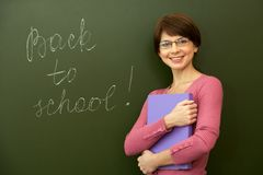 Jonge leraar Stock Afbeelding