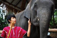 Jonge mahout met zijn olifant Stock Afbeelding