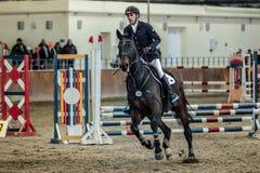 Jonge mannelijke ruiter op paard die over complexe gebiedssporten galopperen Stock Foto's
