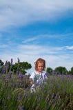 Jonge meisje het plukken lavendel Royalty-vrije Stock Afbeeldingen