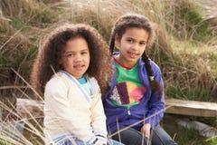 Jonge Meisjes die op Gebied samen spelen stock foto's