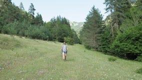 Jonge meisjesgangen in de berg met bakpack - het nationale park van Georgië stock video
