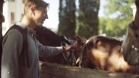 Jonge mens bij het paard in boerderij stock videobeelden