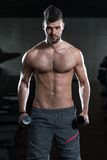 Jonge Mens die Bicepsen met Domoren uitoefenen Royalty-vrije Stock Foto