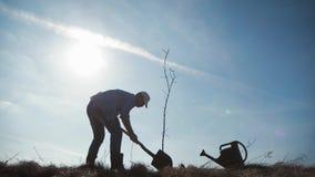 Jonge mens die een boom in de lente planten De boomzaailing van het tuinman vastgestelde jonge fruit in het voorbereide gat in he stock footage