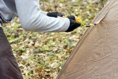 Jonge mens die een tent in het hout a zetten Royalty-vrije Stock Fotografie