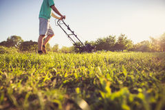 Jonge mens die het gras maait Stock Afbeelding