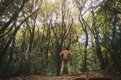 Jonge mens die in majestueus landschap in bos wandelen Stock Foto's