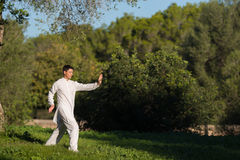 Jonge mens die Tai Chi in het park doen Royalty-vrije Stock Foto's